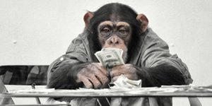 http___i.huffpost.com_gen_3454202_images_n-MONEY-RETRO-628x314